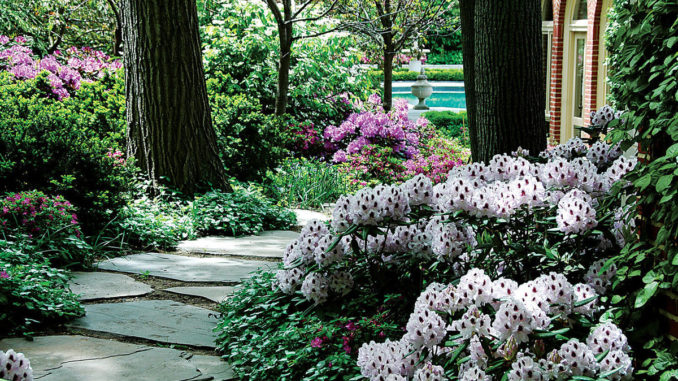 Not Everyone Has The Perfect Garden Space In Which To Build The Perfect  Garden. We Would All Love A Garden That Has A Combination Of Sunshine And  Shade But ...