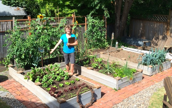 raised-vegetable-beds