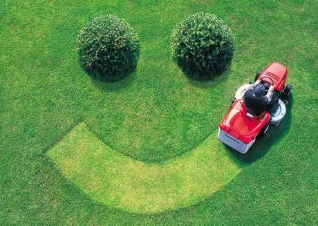 Happy Smile on Grass from Riding Mower