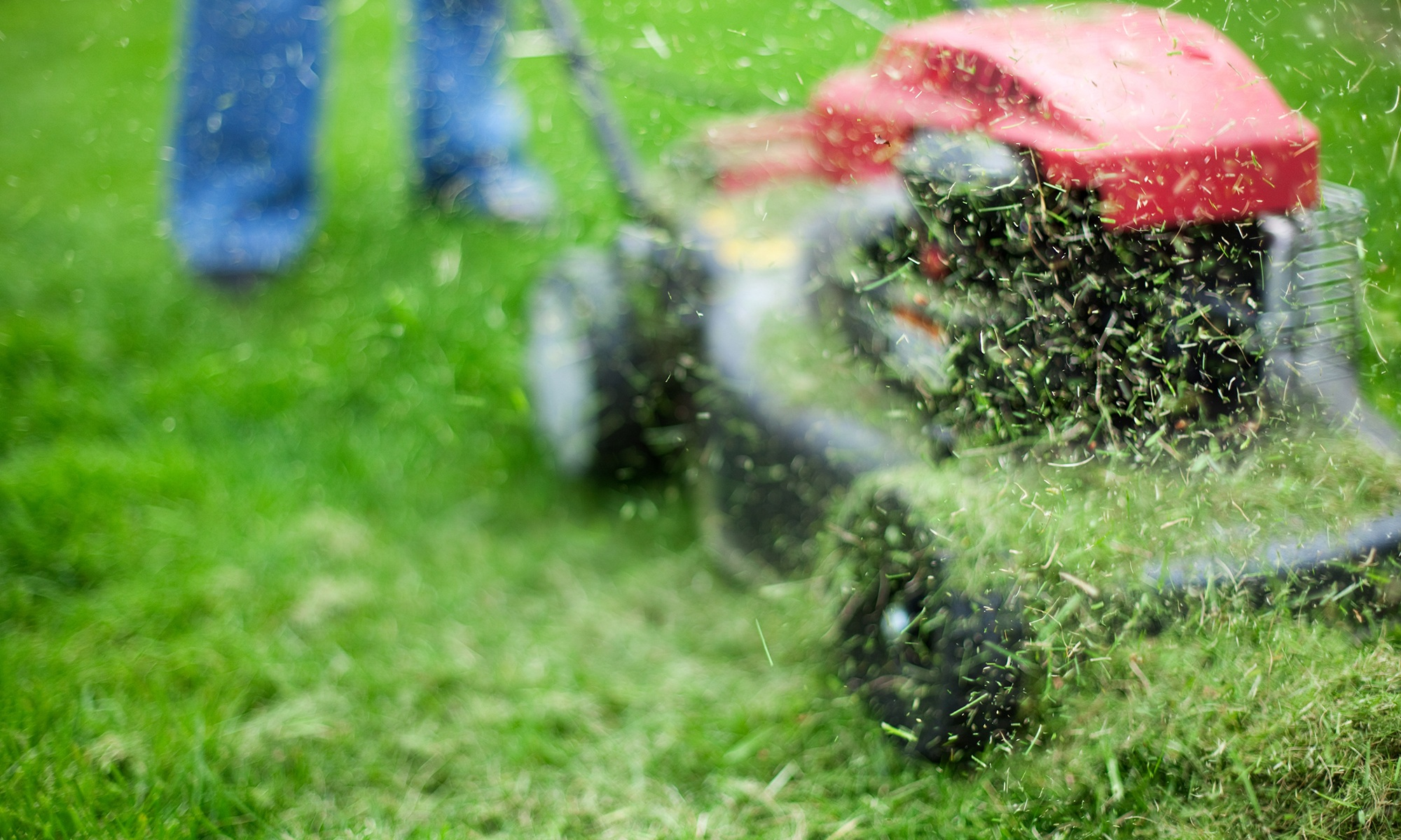 The Best Mulching Mowers for 2018 Mulching Mower Reviews