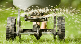 Overseeding after aeration - best way to aerate lawn