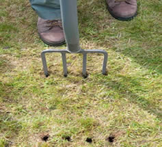 aerate dry soil - best way to aerate lawn