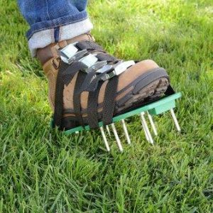 aerator shows - best way to aerate lawn