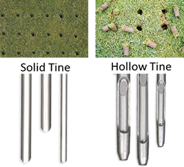 solid tine and hollow tine aerators