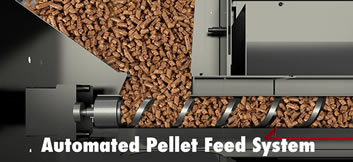 automated pellet feed system