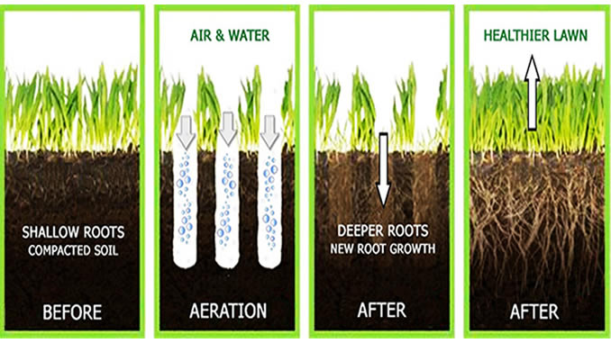 best way to aerate lawn