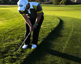 cutting grass with golf club - how to cut grass without a lawnmower