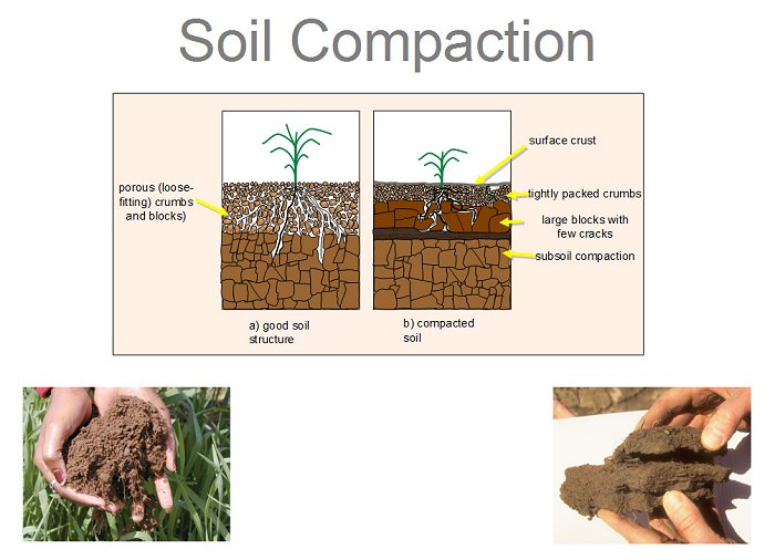 soil compaction - best way to aerate lawn