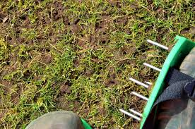 don't aerate on very wet soil