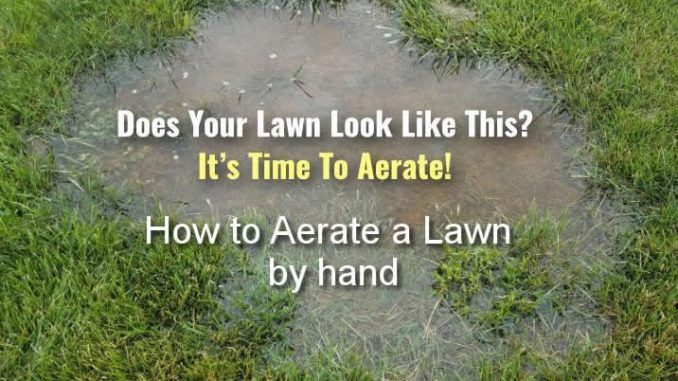 How To Aerate A Lawn By Hand No Machine Aeration