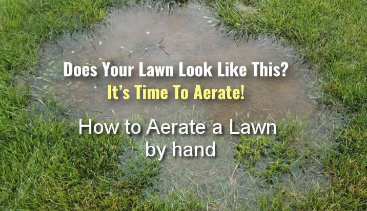 How To Aerate A Lawn By Hand No Machine Lawn Aeration