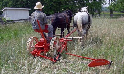 photo of restored champion lawn mower in use