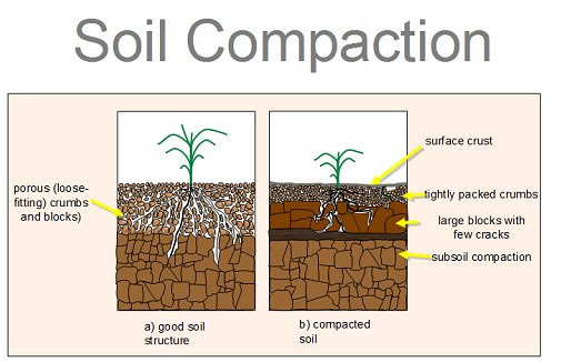 soil compaction - how to aerate lawn by hand