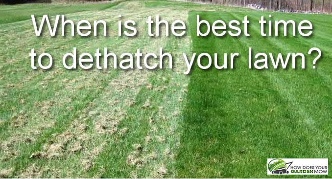 When Is The Best Time To Dethatch Your Lawn How Does