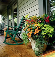 potted plant on porch